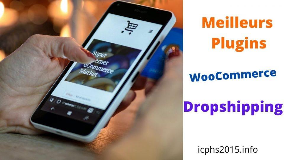 Top meilleurs plugins WooCommerce Dropshipping pour faciliter la gestion de votre boutique en ligne